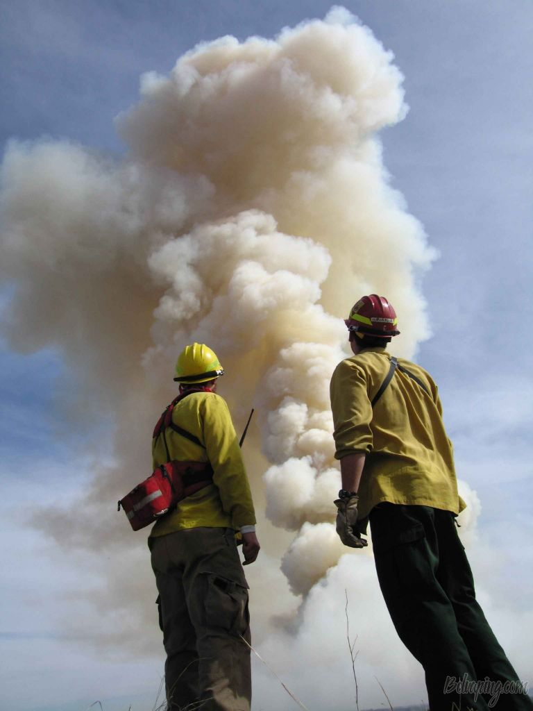people-smoke-male-fire-men-stand-big-front-firefighters-atmosphere-of-earth-954399.jpg